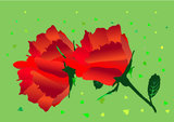 red roses - vector