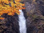waterfall,water,life,health