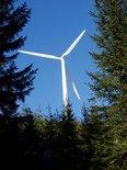 wind,wind energy,energy,energy industry,e-business