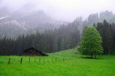 mountain landscape in the rain