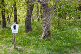 note nature reserve saxony anhalt