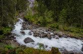 wildbach in natural landscape