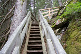fastened walkway made of wood in wild nature without persons in the styria in the day