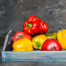 Imperfect natural peppers and tomatoes on an old wooden tray on a dark background. Copy Space.