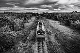 Train on railway transportation in forest and cloud storm, Black and white and monochrome style